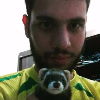 Augusto e Jessy (Ferret / Furão)