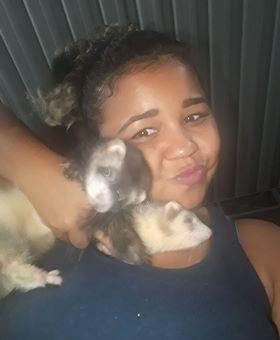 Lylar Souza - Ana e Elza, ferrets