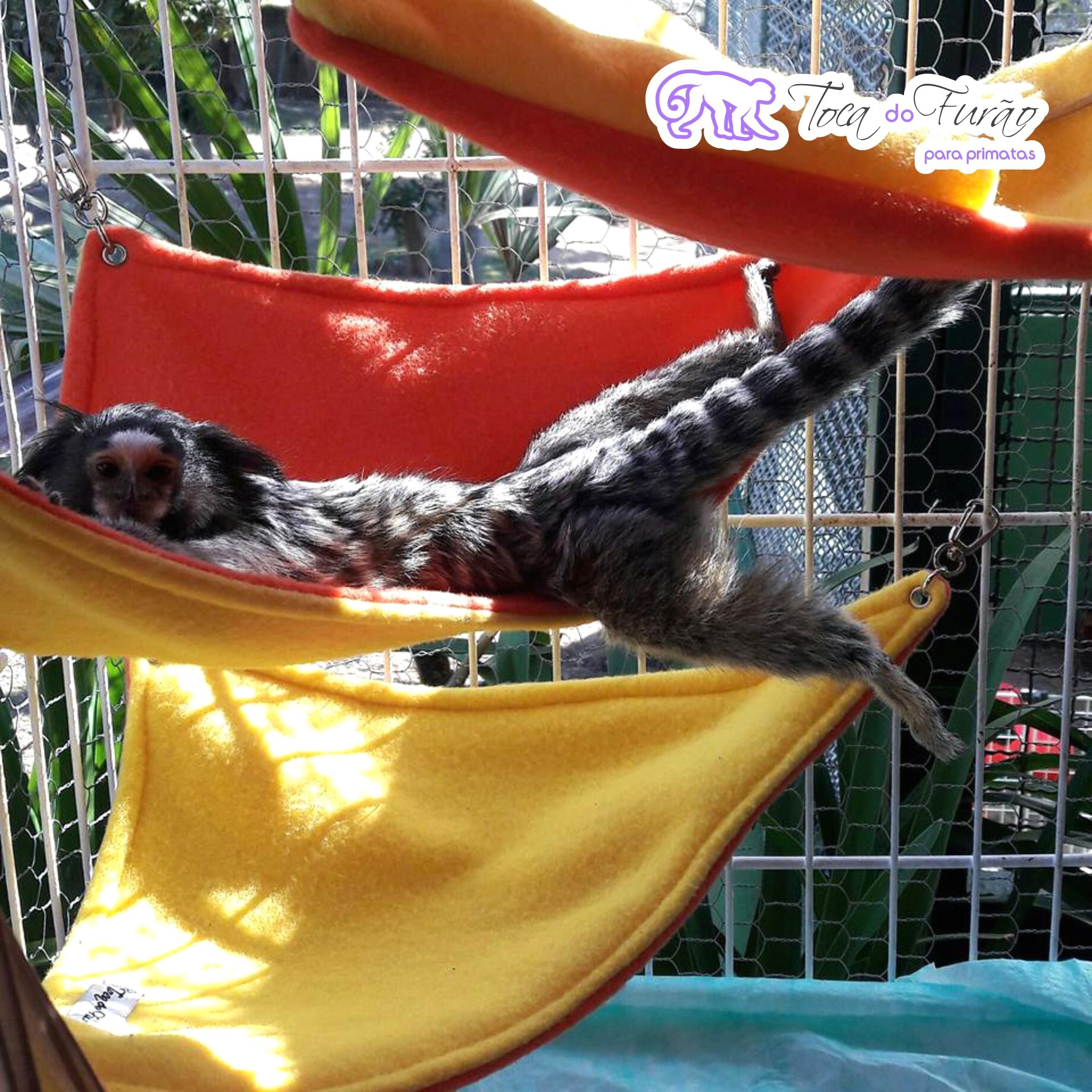 c1eca65eb5c64 Redes de canto para primatas – Toca do Furão